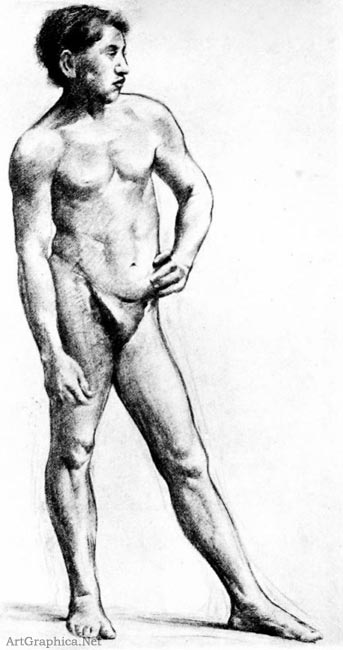 male nude in charcoal, drawing for art students, illustrators handbook
