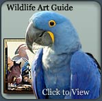 wildlife art guide, wildlife course, drawing wildlife, art, painting, sketching, drawing