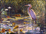 blue heron, wildlife art