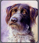 dog portrait, free watercolor lessons
