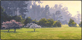 san francisco park, pastel demo