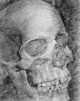 charcoal skull anatomy, innovative and imaginative ways to draw people, portraits