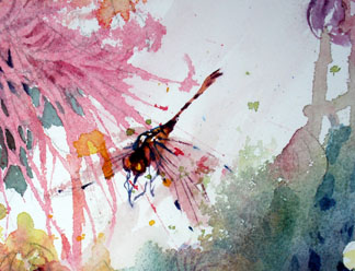 dragonfly watercolor art