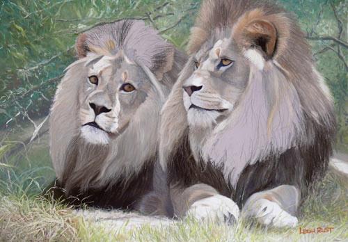leões, arte pastel