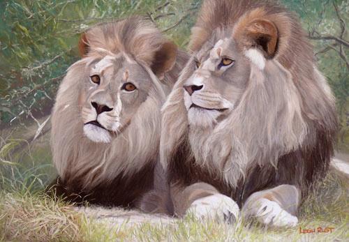 pintura do leão, dicas de pintura da vida selvagem