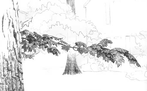 Drawing Tree Foliage, pen and ink art tutorial