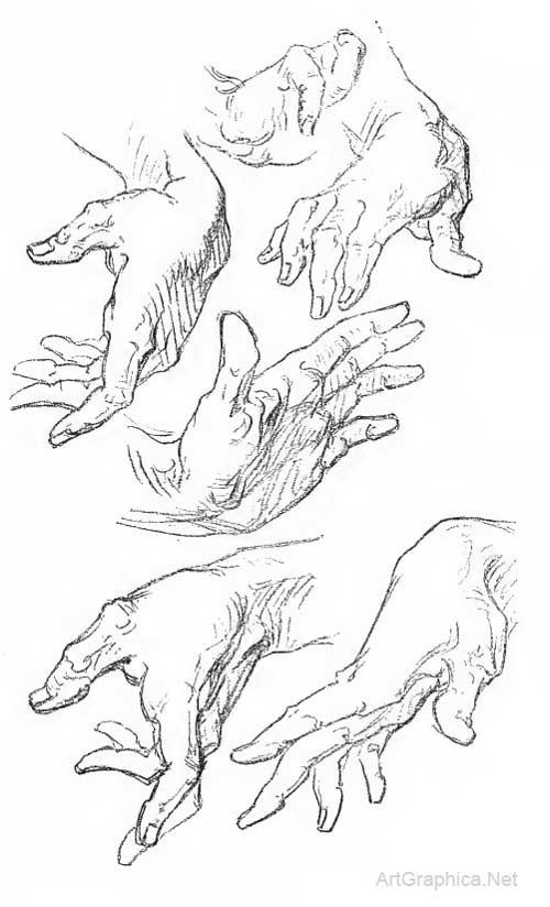 Anatomy Of The Hand And How To Draw Hands By George Bridgman
