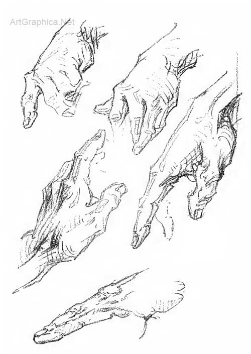 drawing hand, hand studies