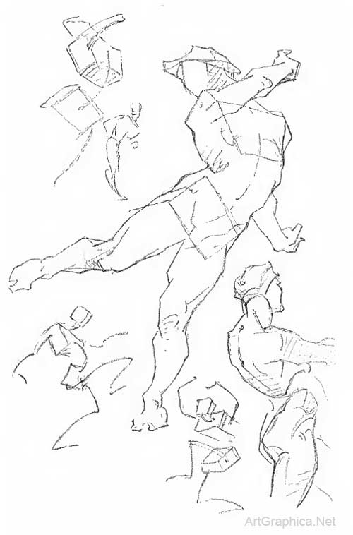 movements of the body, george bridgman, study plate