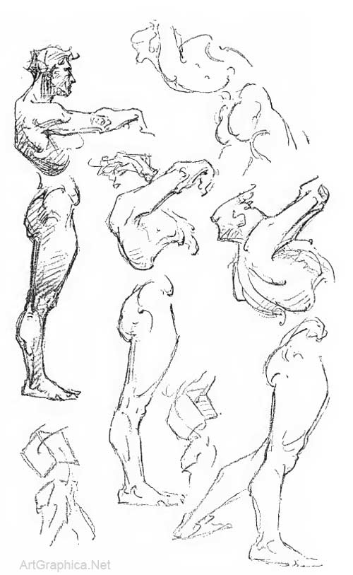 Constructive Anatomy by George Bridgman, free online art book