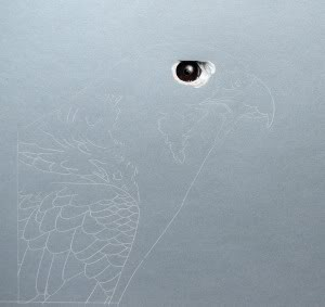 bird eye drawing