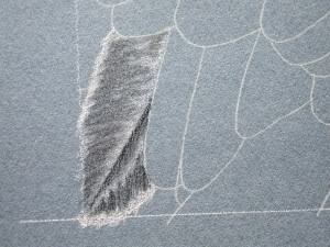 learn to draw a feather