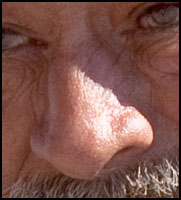 reference photo of nose, learning to draw the nose