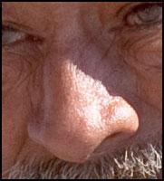 foto de referência do nariz, aprendendo a desenhar o nariz