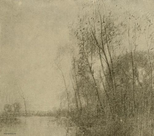 sketch showing masses, drawing tree foliage, tree art