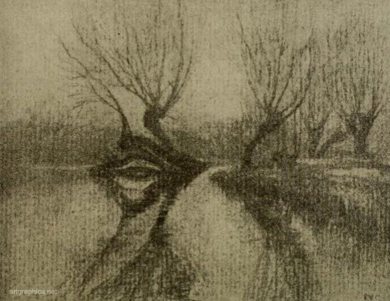 willow charcoal,tree art