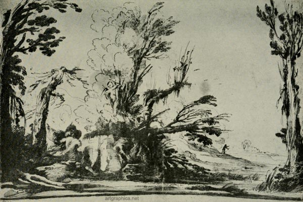guercino drawing, tree art
