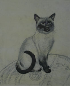 blocking in blacks, painting a cat