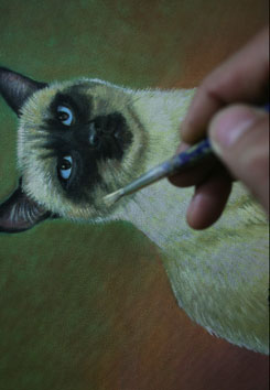 detailing, cat details, painting whiskers, painting fur, how to paint a cat