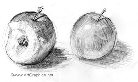 learn how to sketch still life art lesson