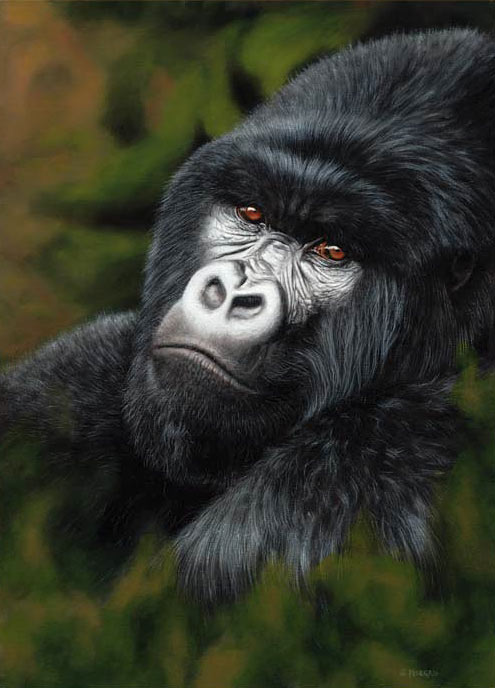 mountain gorilla painting