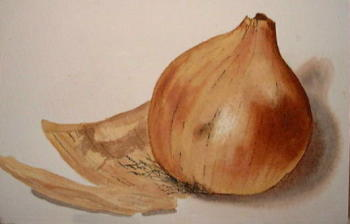 learning how to paint onions