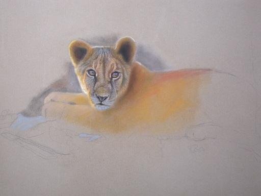filhote de leão, arte pastel