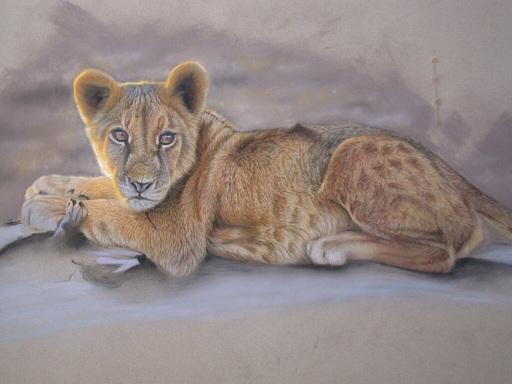 Filhote de leão, pastel