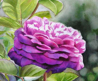 painting roses in watercolor, art instruction, free painting demo