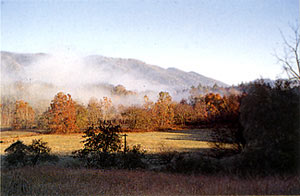 early morning in the smokies