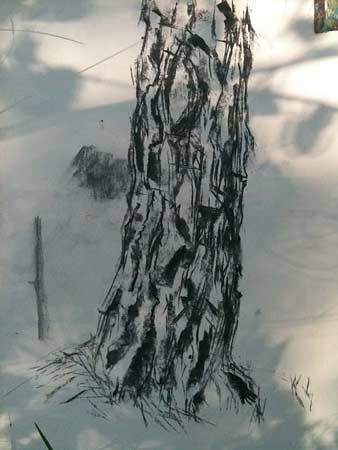 charcoal tree demo, drawing in charcoal