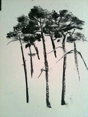 drawing groups of trees, charcoal demo