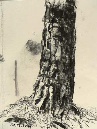 charcoal tree, free art lesson