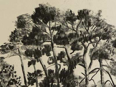 drawing trees en masse, charcoal demo