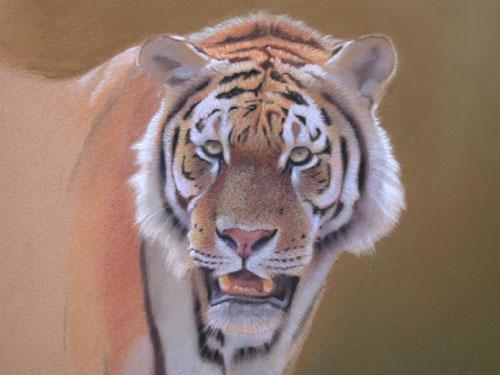 Arte dos animais selvagens de demonstração