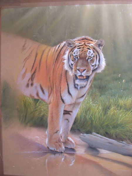 tigre lição pastel