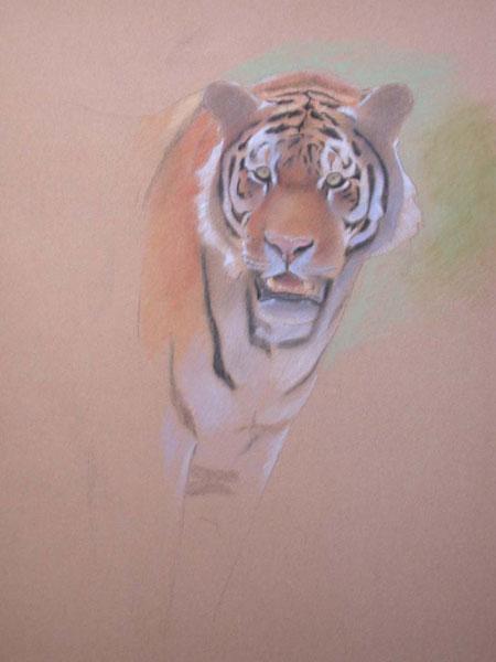 como pintar um tigre
