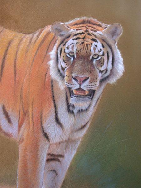 como pintar animais selvagens