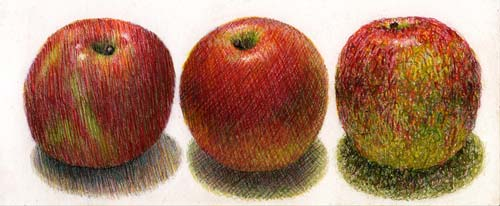 color pencil hatching