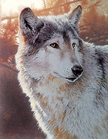 wildlife painting lesson, acrylic art tutorial, acrylic painting  demo, wolf demo, wildlife painting lessons
