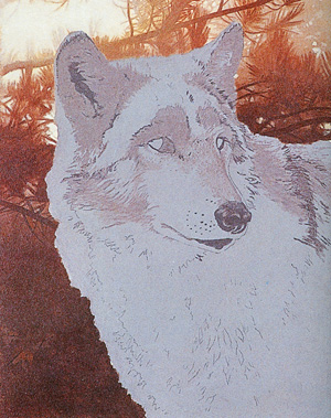 how to paint a wolf, wildlife acrylic lesson, acrylic painting  instruction, wolf, wildlife art
