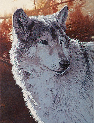 wolf art, free acrylic art instruction, acrylic painting demo,  wolf, wildlife art