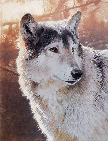 wolf painting demonstration, acrylic art lesson, acrylic painting  instruction, wildlife painting tutorials
