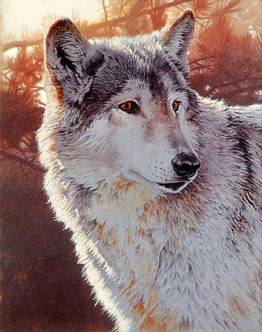 wolf painting lesson, free acrylic art instruction, acrylic  painting demo, wolf, wildlife art